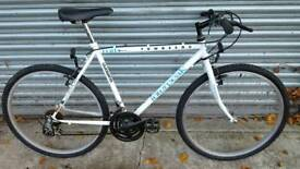 Townsend Bicycle For Sale in Great Riding Order