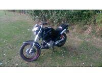 2014 Lexmoto ZSX 125 cc motorbike lovely bike 100% reliable 90mpg
