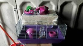 Hampster bundle