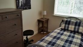 Great single room with own bathroom in comfortable modern house