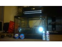 Fish tank with filter lights and pump. **CHEAP QUICK SALE**
