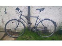 """Raleigh Pioneer Jaguar Hybrid / Town Bike 21"""""""