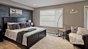 BRAND NEW PENTHOUSE SUITE NEAR EAST ST PAUL AVAILABLE FALL '17!