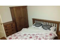 Very Nice Modern Large Double Room, East Finchley