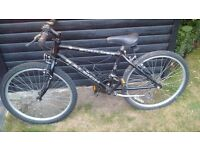 Raleigh Mountain Bike - 20inch wheels - £35