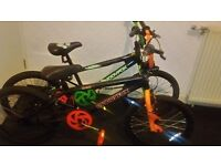 2 boys Muddy fox bikes
