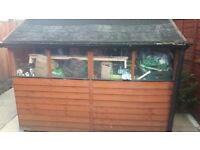Garden shed 8 ft x 6 ft in good condition
