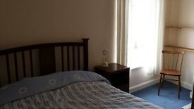 Good size room to rent in tidy house in Thorpe Hamlet