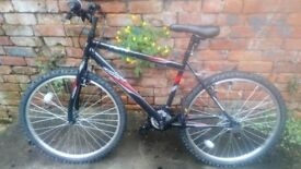 Raleigh Activ by Flyte II - Bicycle Ridden only once Pick up today for £50