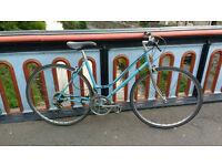 Ladies Classic Town Bike