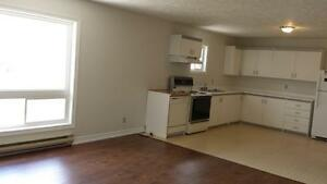 Angus-2Bdrm/2Bath Renovated Apt in Building