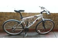 Low priced Mountain Bike in full working order