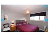 Double bedroom or 3 bedroom full flat