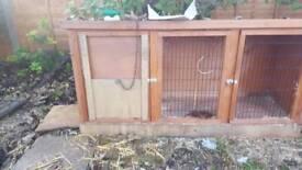 Rabbit hut h