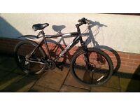 Adults GIANT Terrago mountain bike