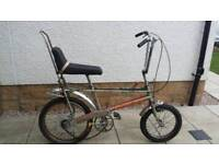 Raleigh Chopper/Grifter