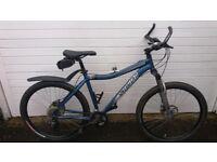 Ladies Mountain Bike Specialized Hardrock Sport