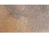 Brand carpet remnant
