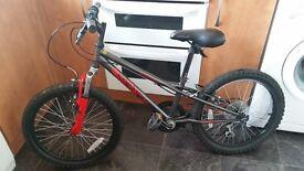 """Kids Apollo Spider 20"""" Mountain Bike"""