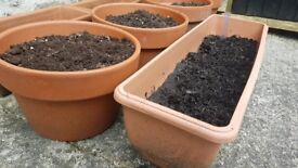 Terracotta and plastic garden pots and planters by HOMEBASE®
