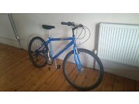 Mountain bike Raleigh jamtland