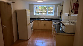 Double room, newly renovated in shared student house £300pcm