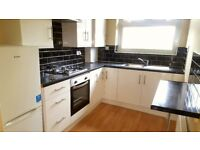 Stunning spacious one bedroom second floor flat in Forest Gate, E7