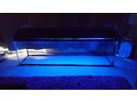 4 feet fish tank with hood and light and water filter no leaks bargain at £75