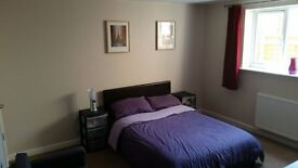 2 Double Bed Flat - New Build 2014, Ground Floor, Private Parking and Garden
