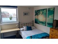 Double room in vegetarian flat - short stay
