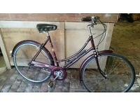 Raleigh Cameo Medium Ladies Classic Bike