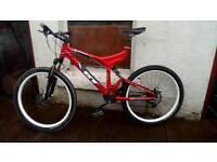Mountain Bike GT