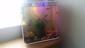 Bio orb fishtank reef one, forty-five liters.Lots off accessories plants ect.