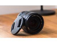 Panasonic H-VS014140 14-140mm F/4.0-5.8 Mega O.I.S Lens