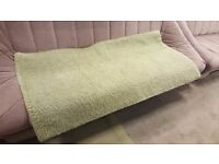 Plush Green Area Rug