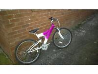Bike, very good condition, kept in garage