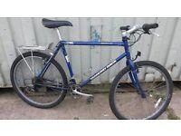 Diamondback Ascent EX Retro Mountain Bike