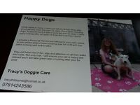Happy Dogs (Tracy' Doggie Care) I provide Home Visits, Transportation, Dog sitting, Dogie Day Care.