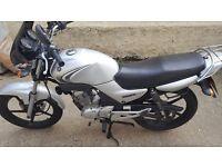 Yamaha YBR 125 08 Plate - good condition