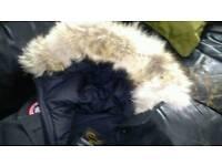 Canada goose chilliwack bomber jacket fur hood