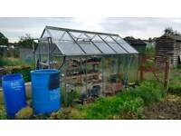 10 x 6 greenhouse