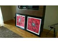2 large flower pictures with black frames