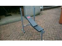 Pro Power Weights Bench