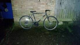 Mens bike fully serviced can deliver