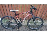 Giant Revel 4 Mountain Bike £180