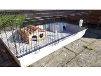 Guinea Pig Cage 140cm x 70cm x 50cm