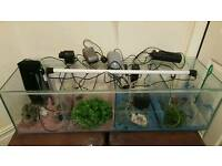 Fish tank 4 tanks in one