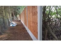 Fencing - immediate slots available *Colchester*
