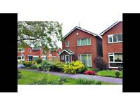 Room to let near kings mill hospital Mansfield