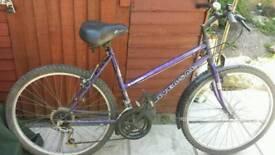 Universal lady mountain bike